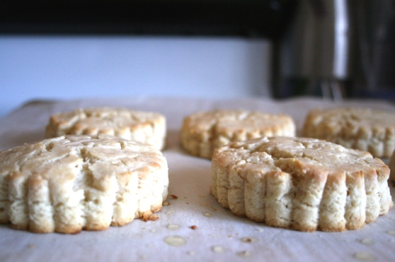 CashewCreamCheeseBiscuits5